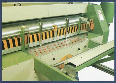 Флексо принтер, слотер, ротационна щанца, сгъвачно-лепачна секция NS 2400X1000